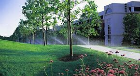 Reduce landscape water consumption