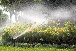 Irrigation water conservation
