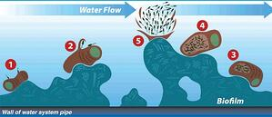 HydroFLOW physical water conditioning causes biofilm to detach and helps to prevent new biofilm from colonizing in cooling towers
